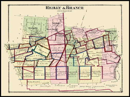 Branch Township,Reiley Township