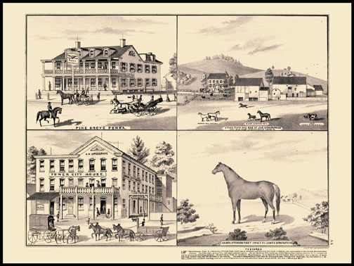 American Eagle Hotel - Pinegrove,Tower City House,Stock Farm - Schuylkill Haven